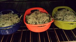 casserole oven